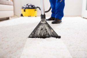 Hochwertige Teppichreinigung